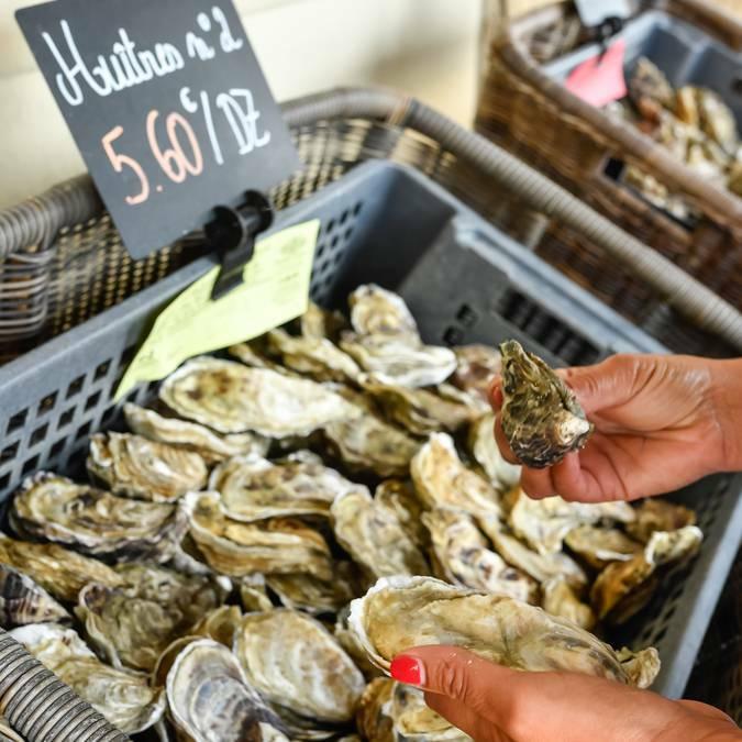 Huître creuse sur le marché de Cancale